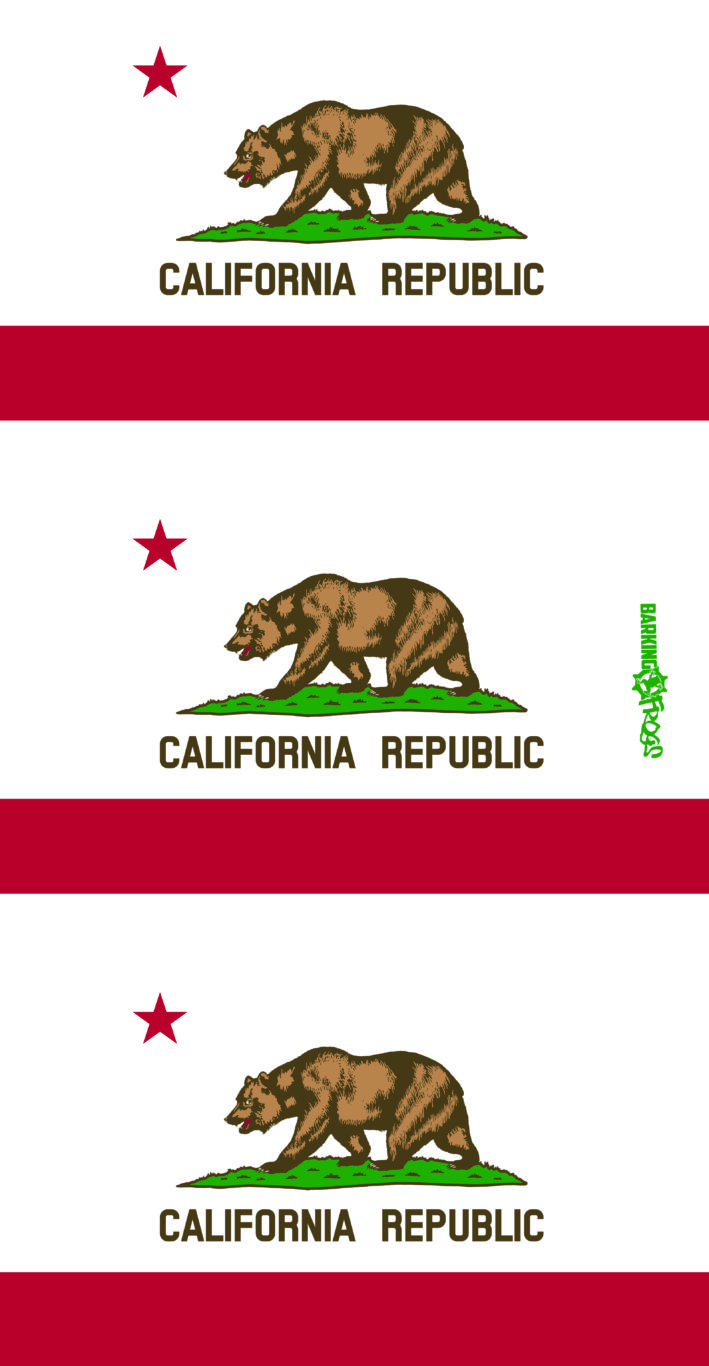 MB_CaliforniaFlag_3-01